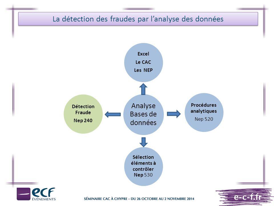 La détection des fraudes par l'analyse des données Analyse Bases de données Audit des stocks Audit Social & fiscal F.E.C Audit des Ventes & Achats