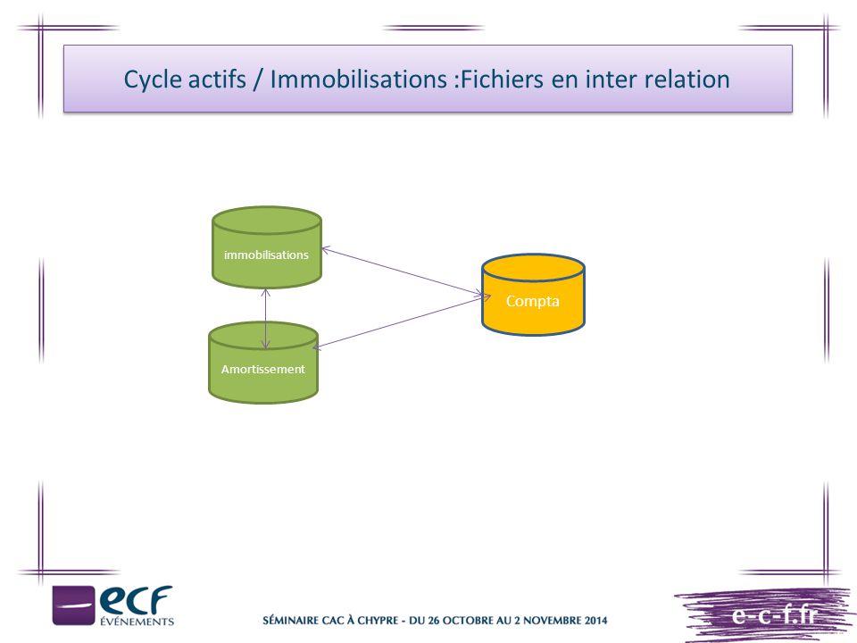 Compta immobilisations Amortissement Cycle actifs / Immobilisations :Fichiers en inter relation