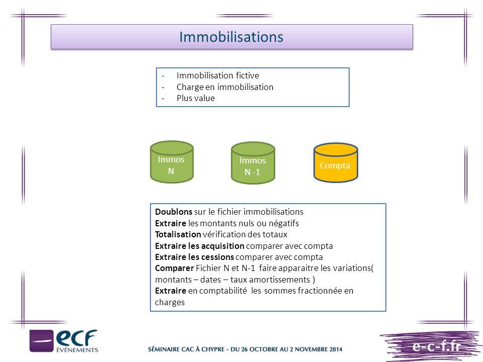 Immobilisations -Immobilisation fictive -Charge en immobilisation -Plus value Doublons sur le fichier immobilisations Extraire les montants nuls ou né