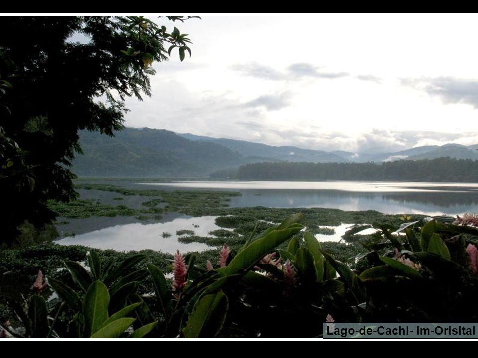Tapanti Nationalpark
