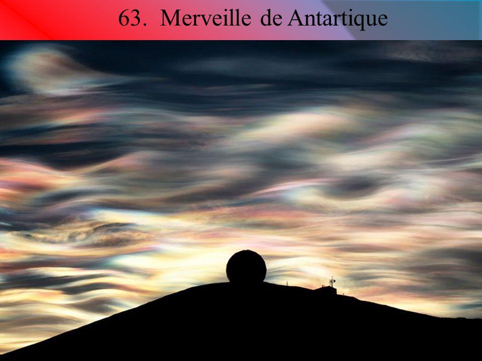 63. Merveille de Antartique