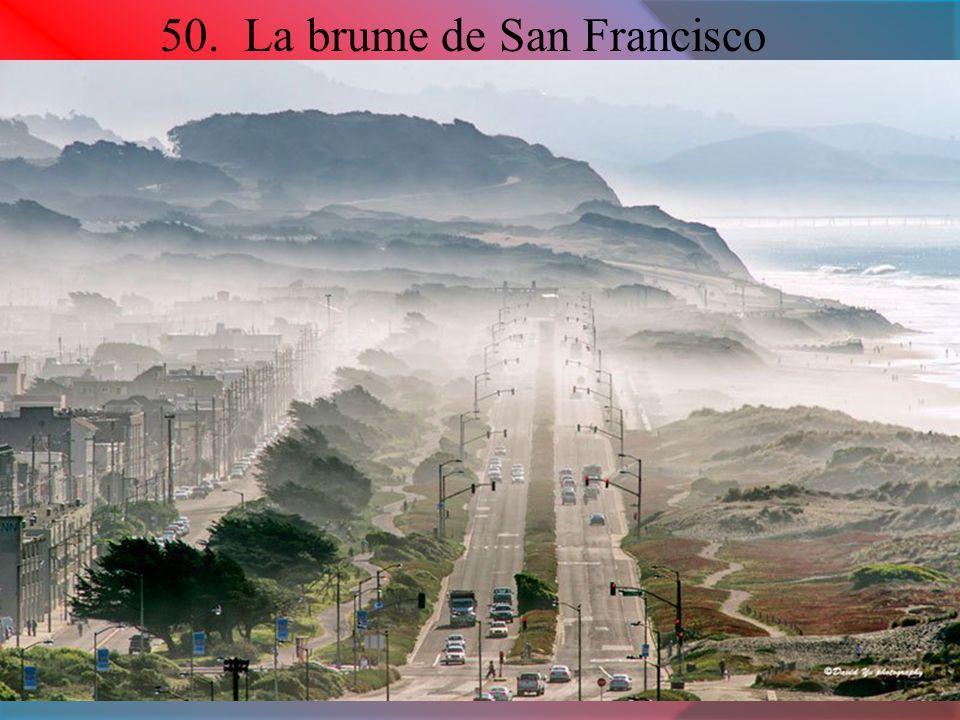 50. La brume de San Francisco