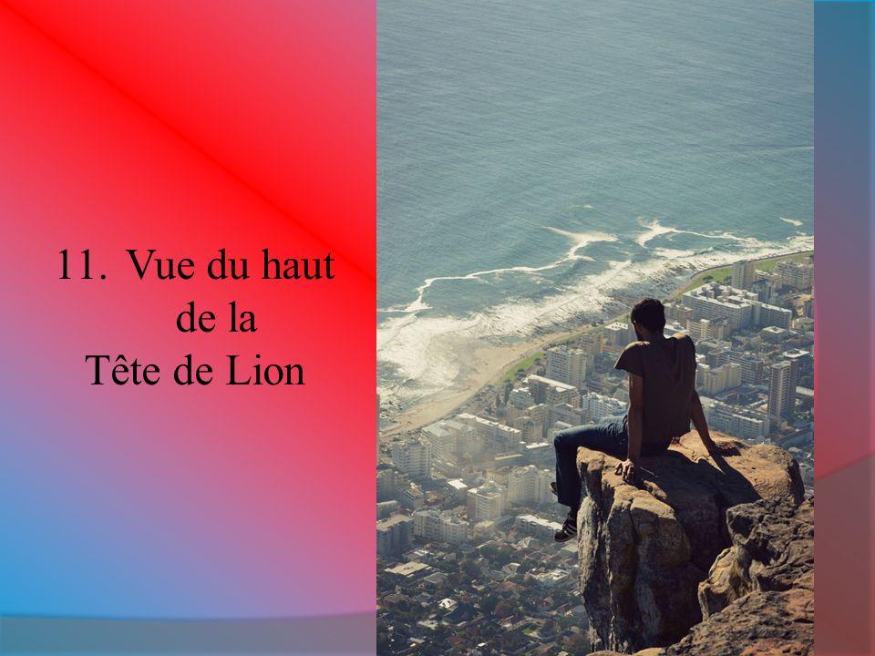 11.Vue du haut de la Tête de Lion