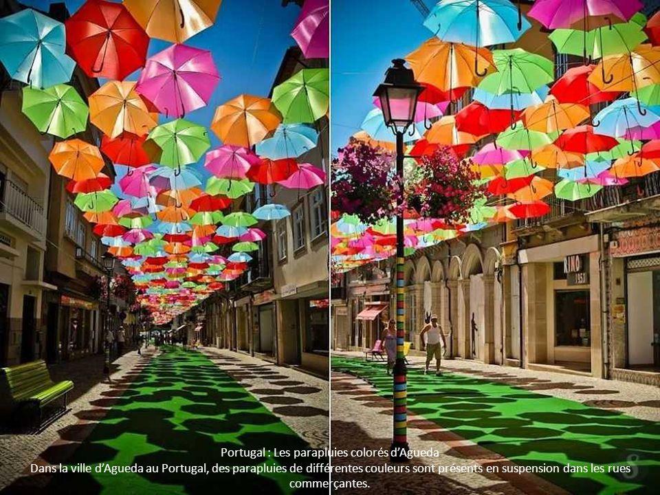 Portugal : Les parapluies colorés d'Agueda Dans la ville d'Agueda au Portugal, des parapluies de différentes couleurs sont présents en suspension dans