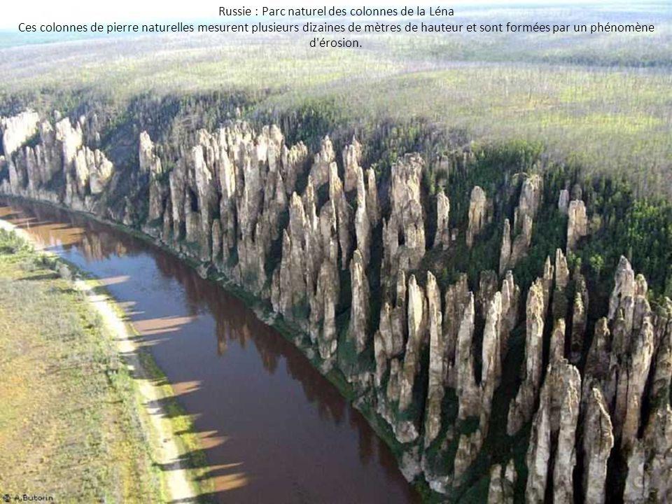 Russie : Parc naturel des colonnes de la Léna Ces colonnes de pierre naturelles mesurent plusieurs dizaines de mètres de hauteur et sont formées par u