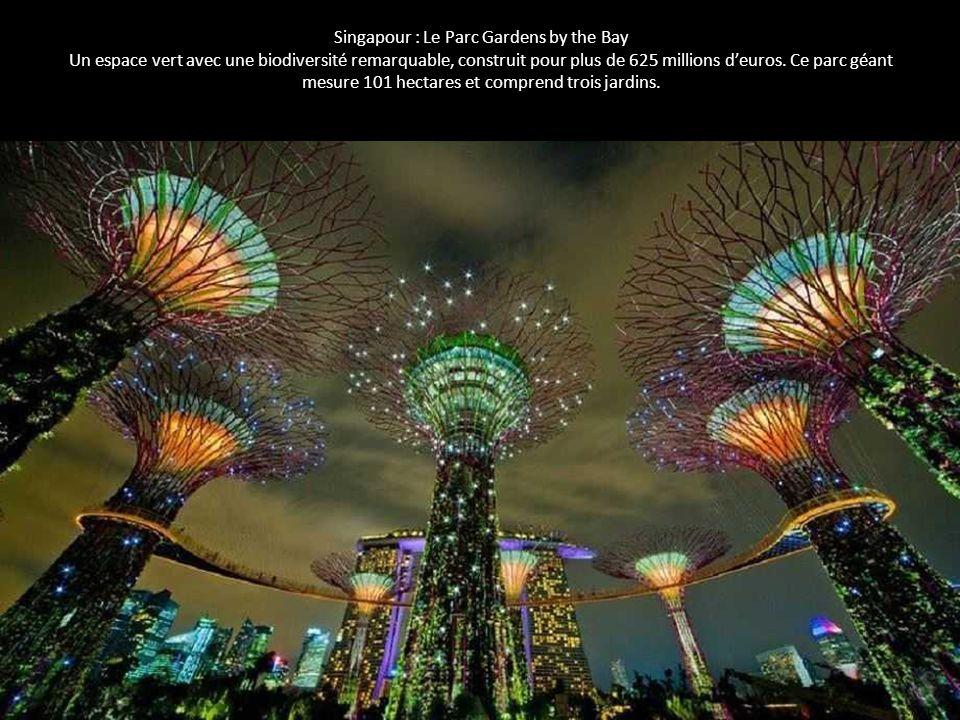 Singapour : Le Parc Gardens by the Bay Un espace vert avec une biodiversité remarquable, construit pour plus de 625 millions d'euros. Ce parc géant me