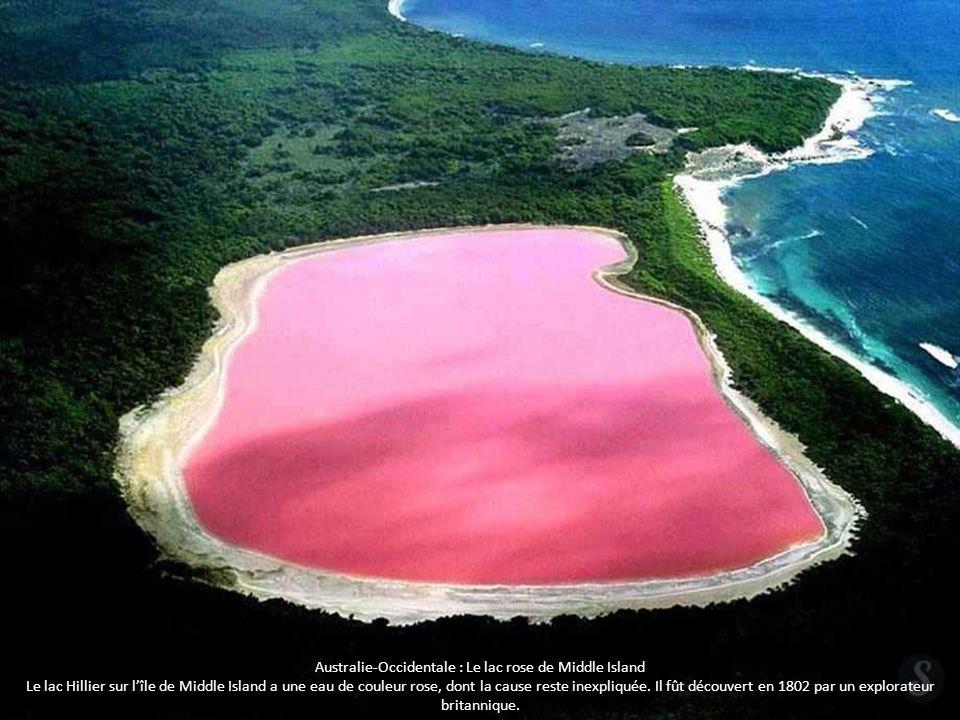 Australie-Occidentale : Le lac rose de Middle Island Le lac Hillier sur l'île de Middle Island a une eau de couleur rose, dont la cause reste inexpliq