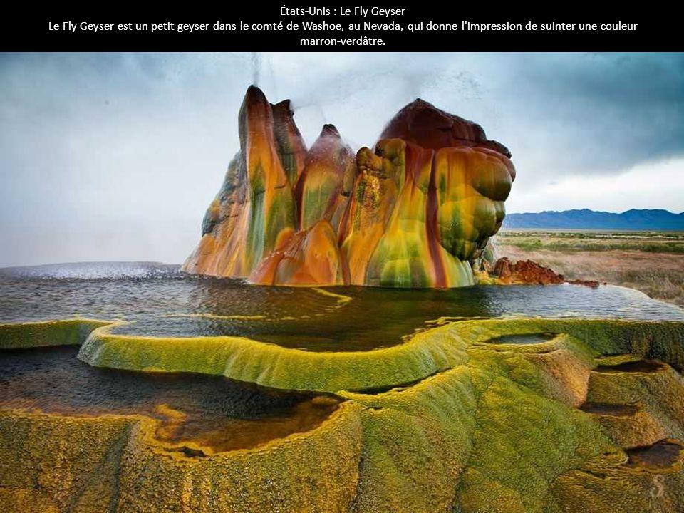 États-Unis : Le Fly Geyser Le Fly Geyser est un petit geyser dans le comté de Washoe, au Nevada, qui donne l'impression de suinter une couleur marron-