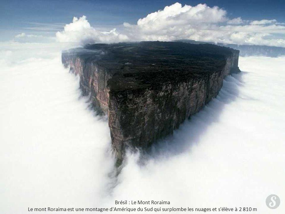 Brésil : Le Mont Roraima Le mont Roraima est une montagne d'Amérique du Sud qui surplombe les nuages et s'élève à 2 810 m