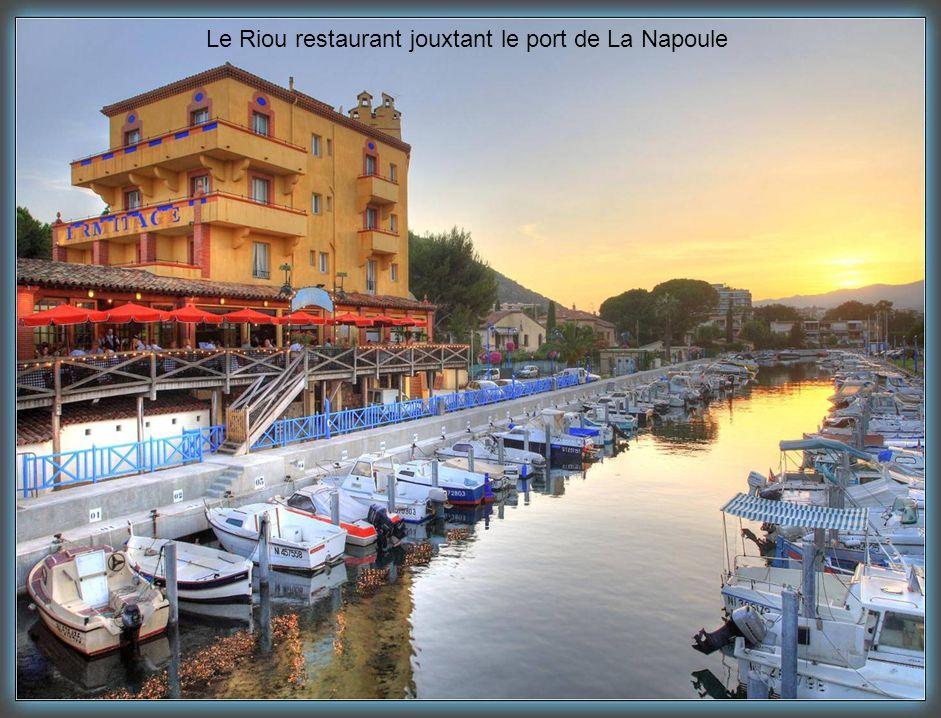 Mandelieu La Napoule, Cité du Mimosa, est aussi la capitale du nautisme sur la Côte d'Azur.