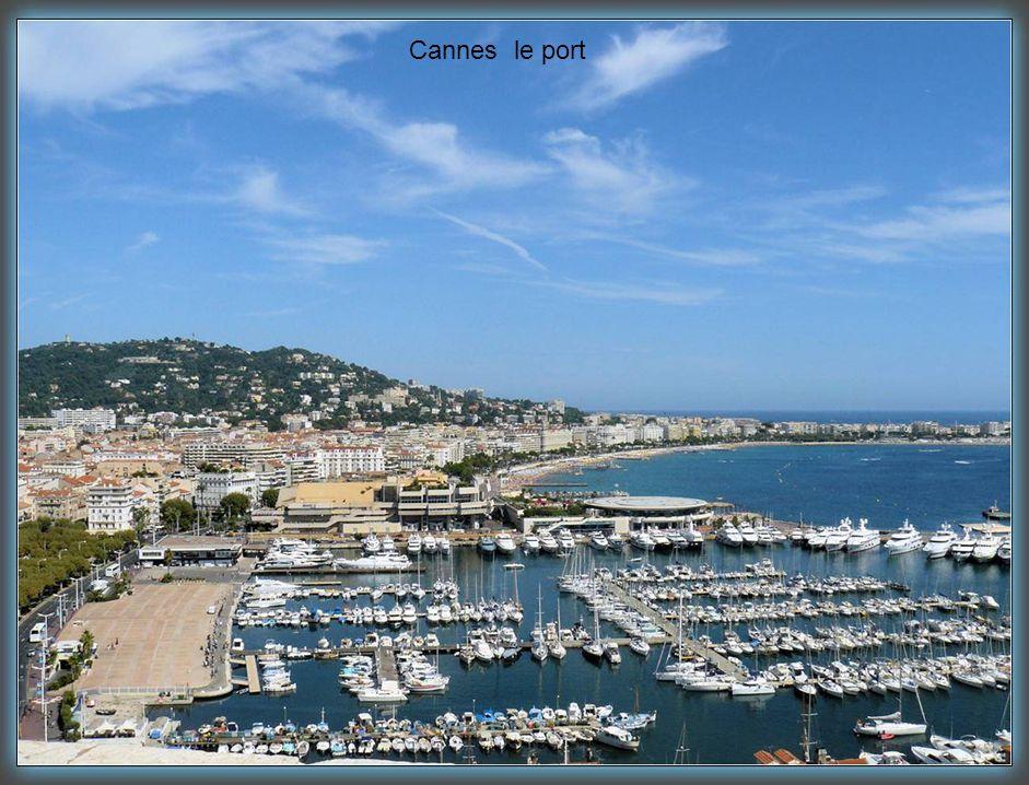 Cannes une rue piétonne