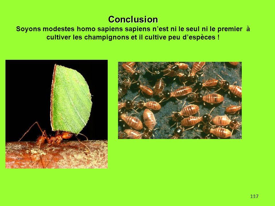 117 Conclusion Soyons modestes homo sapiens sapiens n'est ni le seul ni le premier à cultiver les champignons et il cultive peu d'espèces ! 117