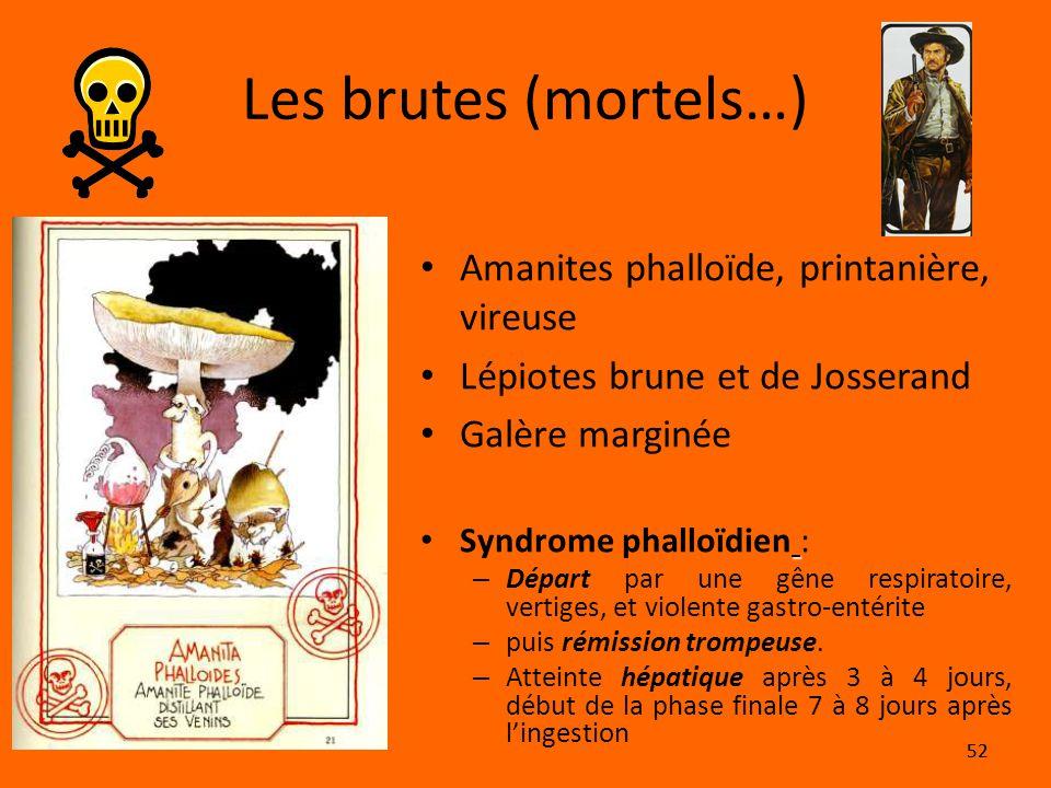 52 Les brutes (mortels…) Amanites phalloïde, printanière, vireuse Lépiotes brune et de Josserand Galère marginée Syndrome phalloïdien : – Départ par u