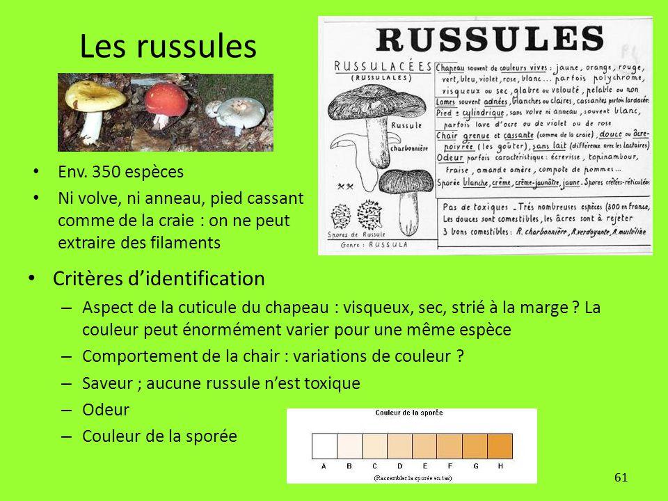 61 Les russules Critères d'identification – Aspect de la cuticule du chapeau : visqueux, sec, strié à la marge ? La couleur peut énormément varier pou