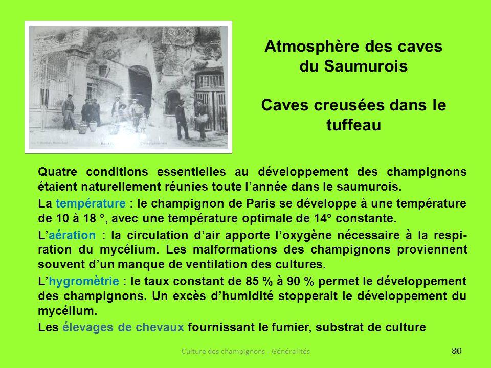 80 Quatre conditions essentielles au développement des champignons étaient naturellement réunies toute l'année dans le saumurois. La température : le