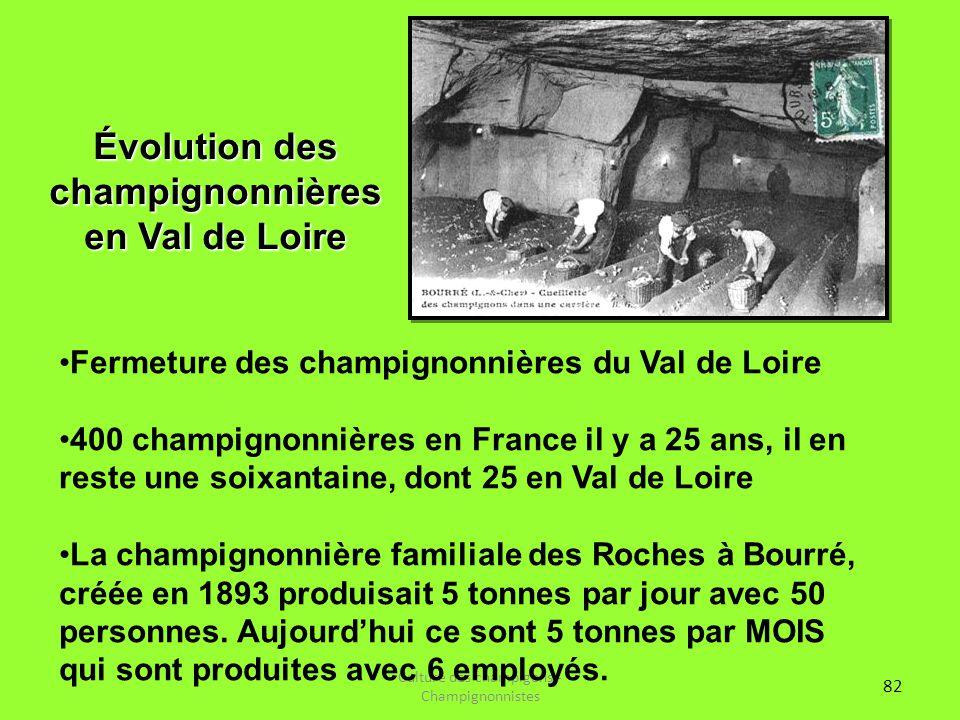 82 Culture des champigons - Champignonnistes Évolution des champignonnières en Val de Loire Fermeture des champignonnières du Val de Loire 400 champig