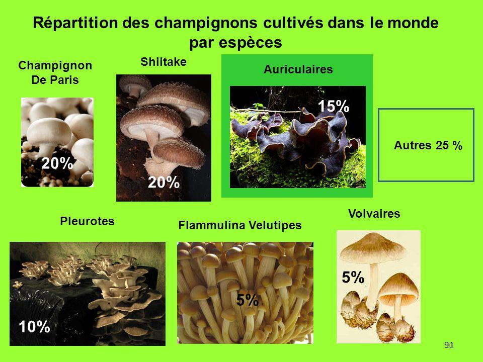 91 Répartition des champignons cultivés dans le monde par espèces 20% 5% 10% 5% Autres 25 % 15% Flammulina Velutipes Pleurotes Champignon De Paris Shi
