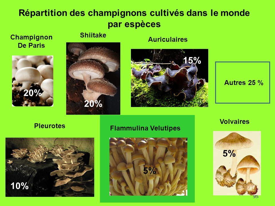 95 Répartition des champignons cultivés dans le monde par espèces 20% 5% 10% 5% Autres 25 % 15% Flammulina Velutipes Pleurotes Champignon De Paris Shi
