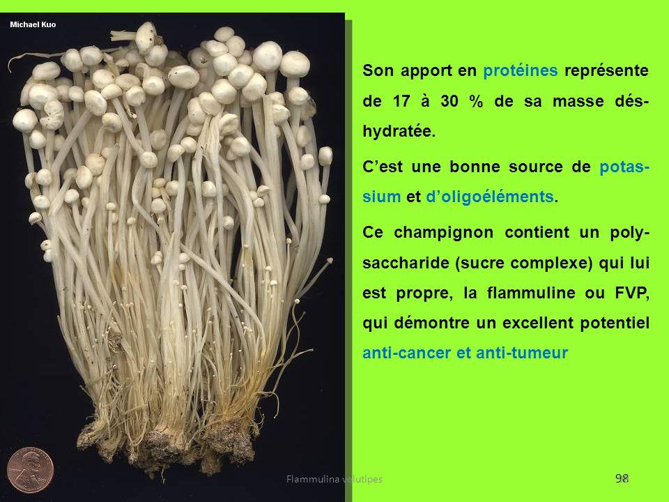 98 Son apport en protéines représente de 17 à 30 % de sa masse dés- hydratée. C'est une bonne source de potas- sium et d'oligoéléments. Ce champignon