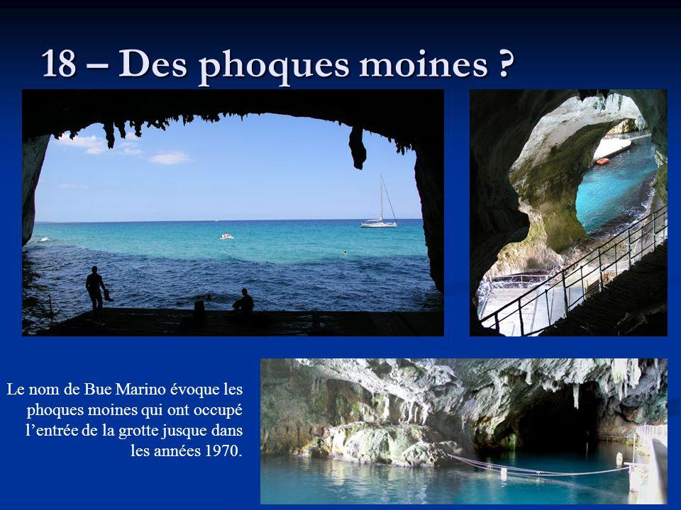 18 – Des phoques moines ? Le nom de Bue Marino évoque les phoques moines qui ont occupé l'entrée de la grotte jusque dans les années 1970.