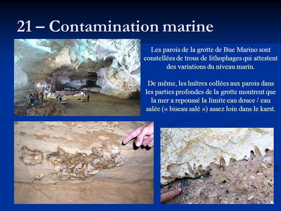 21 – Contamination marine Les parois de la grotte de Bue Marino sont constellées de trous de lithophages qui attestent des variations du niveau marin.