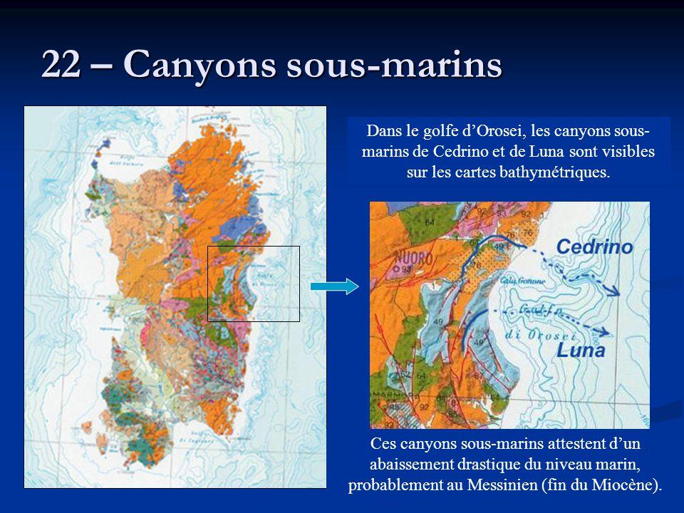 22 – Canyons sous-marins Dans le golfe d'Orosei, les canyons sous- marins de Cedrino et de Luna sont visibles sur les cartes bathymétriques. Ces canyo