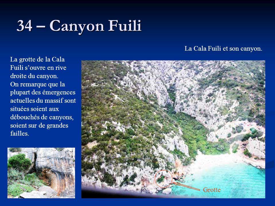 34 – Canyon Fuili La grotte de la Cala Fuili s'ouvre en rive droite du canyon. On remarque que la plupart des émergences actuelles du massif sont situ