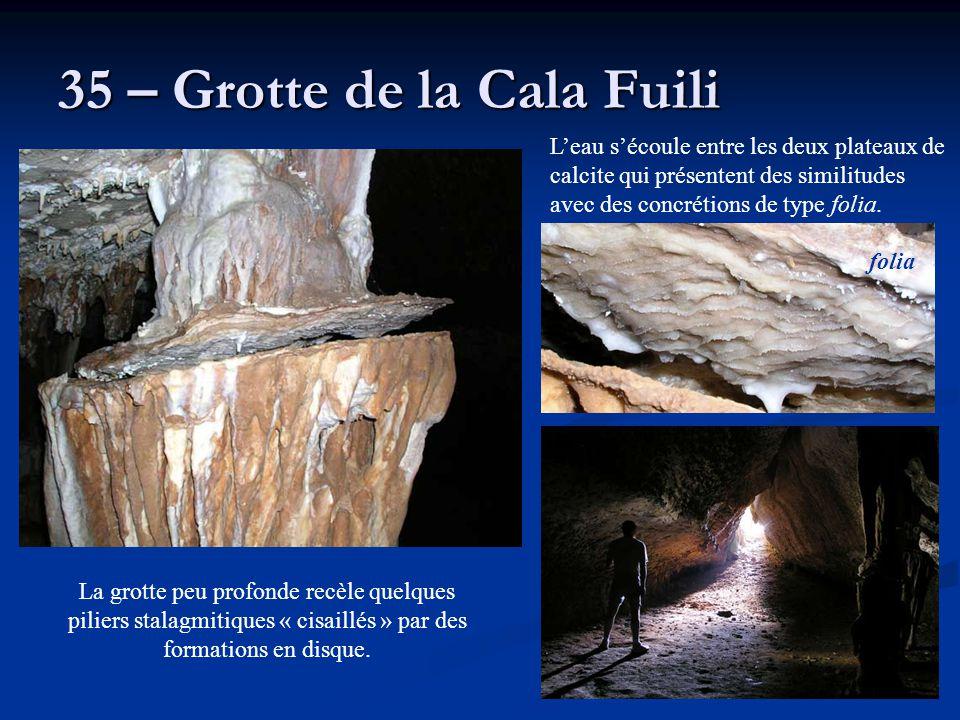 35 – Grotte de la Cala Fuili L'eau s'écoule entre les deux plateaux de calcite qui présentent des similitudes avec des concrétions de type folia. La g
