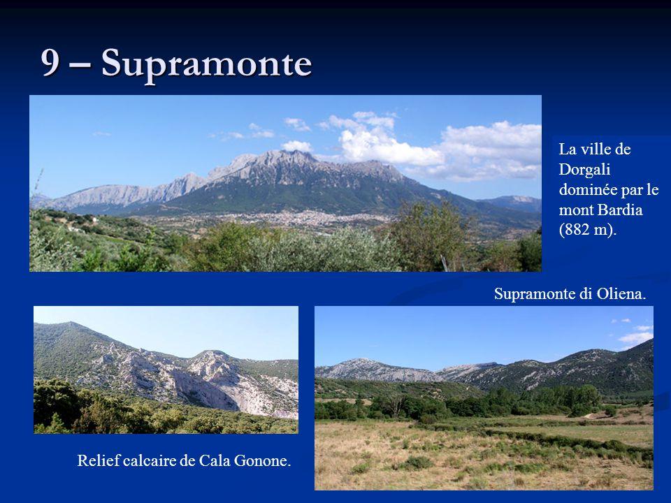 9 – Supramonte Supramonte di Oliena. La ville de Dorgali dominée par le mont Bardia (882 m). Relief calcaire de Cala Gonone.