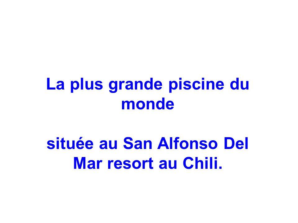 La plus grande piscine du monde située au San Alfonso Del Mar resort au Chili.