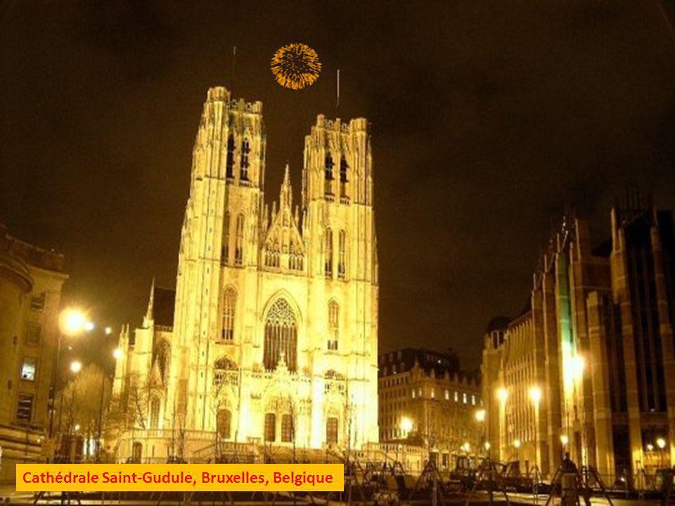 Cathédrale Sainte Waudru, Mons, Belgique