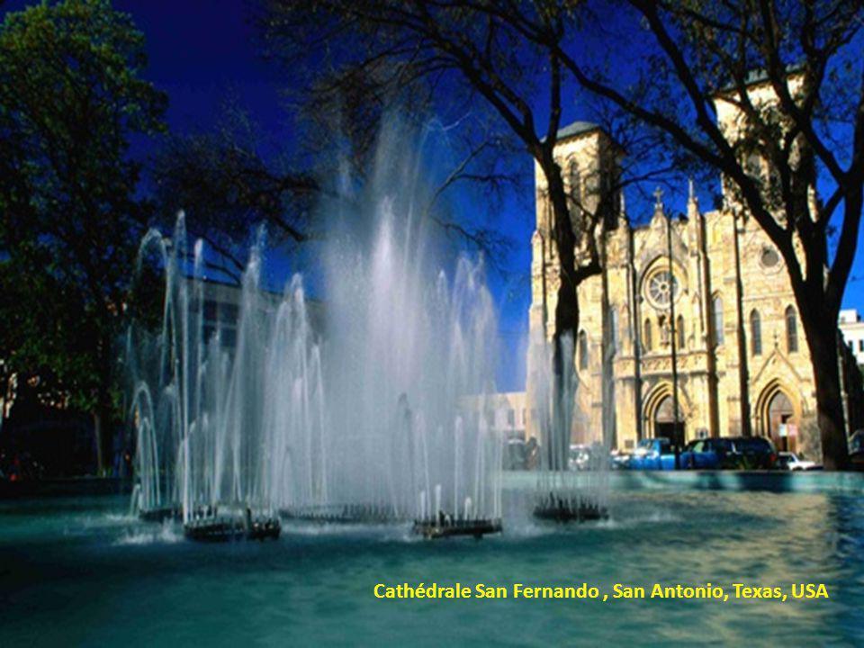 Cathédrale San Fernando, San Antonio, Texas, USA