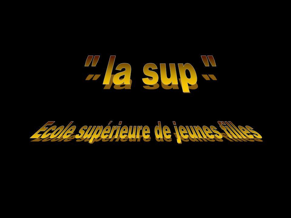 « La SUP » Musée de la pipe et du diamant Porte de l'horloge et rue du marché Rue et place du château Place du coin (Durée 7 minutes)