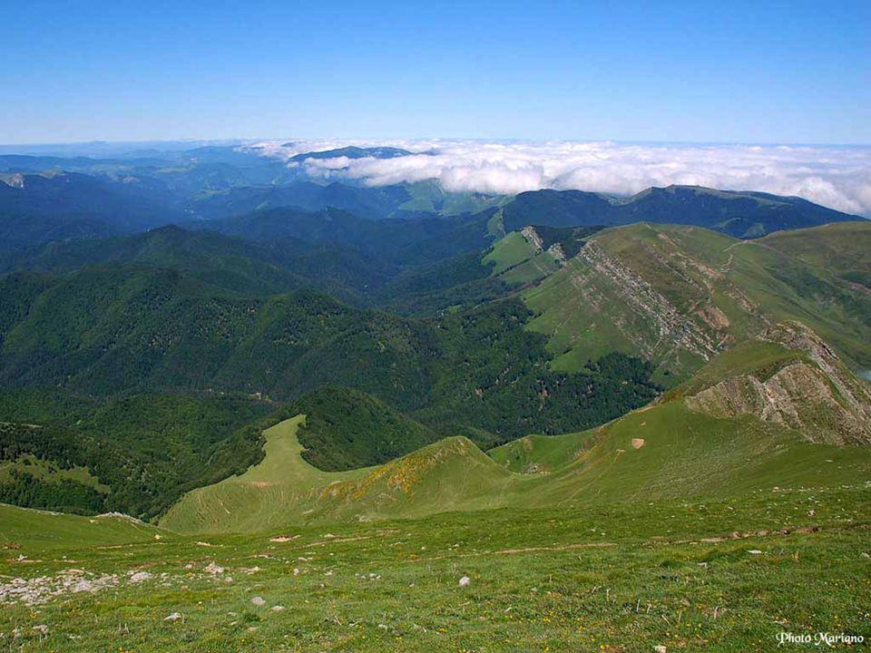 Le Pays Basque Auteur Mariano