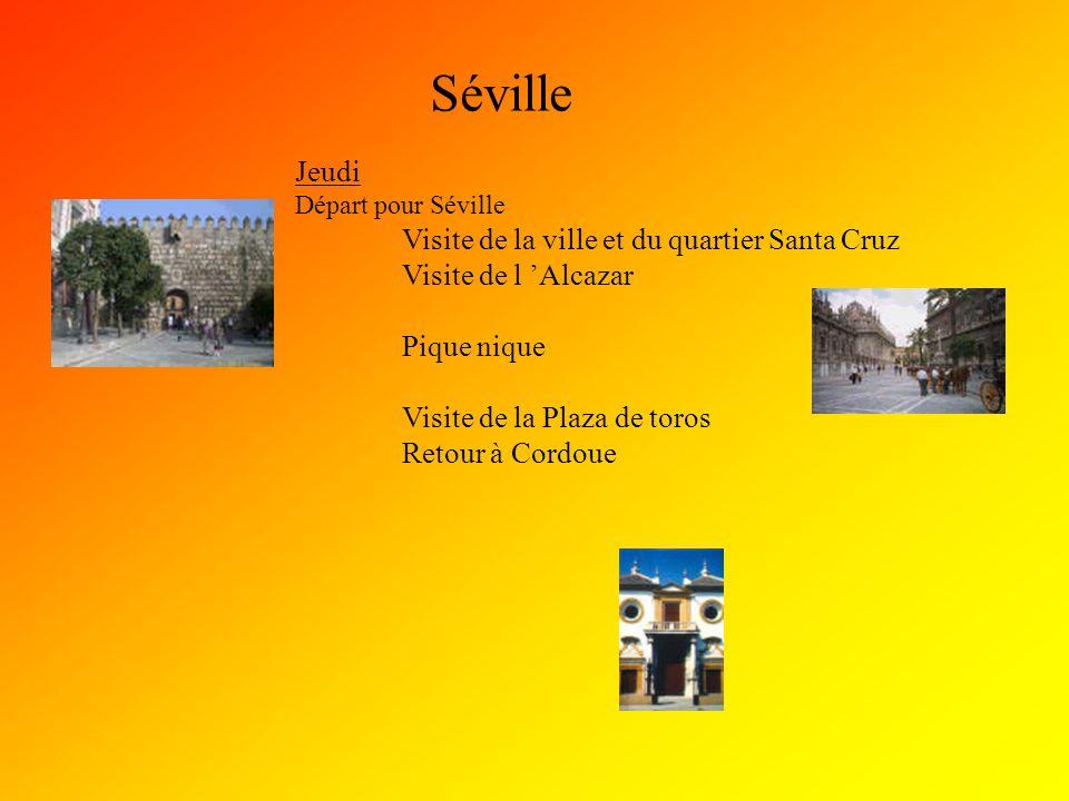 Séville Jeudi Départ pour Séville Visite de la ville et du quartier Santa Cruz Visite de l 'Alcazar Pique nique Visite de la Plaza de toros Retour à C