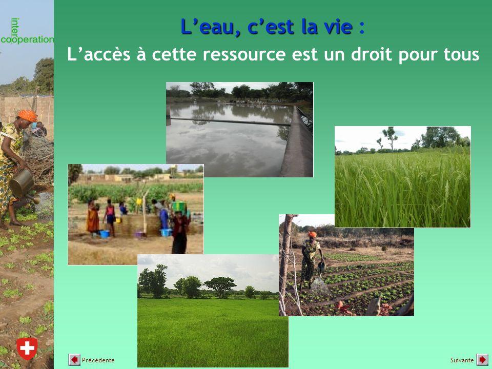L'eau, c'est la vie L'eau, c'est la vie : L'accès à cette ressource est un droit pour tous SuivantePrécédente