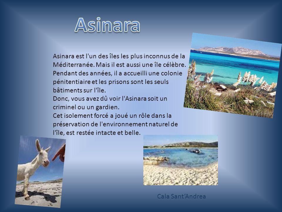 Asinara est l un des îles les plus inconnus de la Méditerranée.