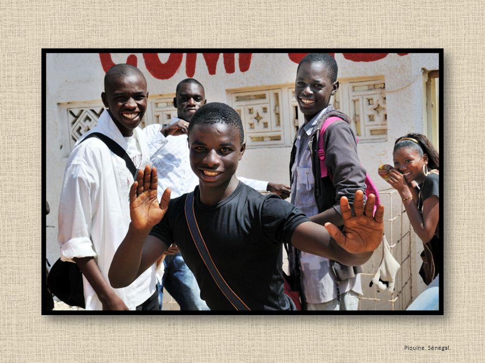Piquine. Sénégal.