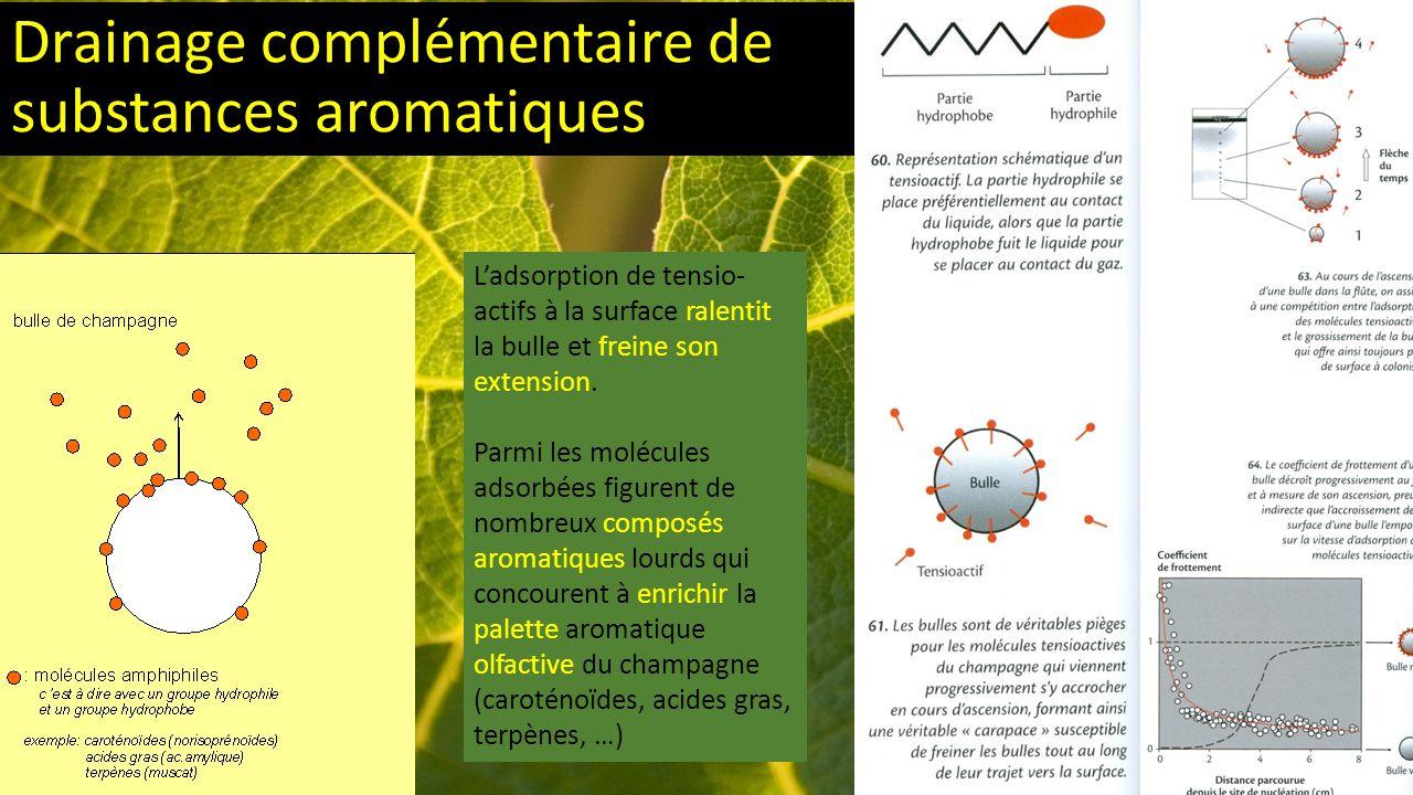 Drainage complémentaire de substances aromatiques L'adsorption de tensio- actifs à la surface ralentit la bulle et freine son extension.