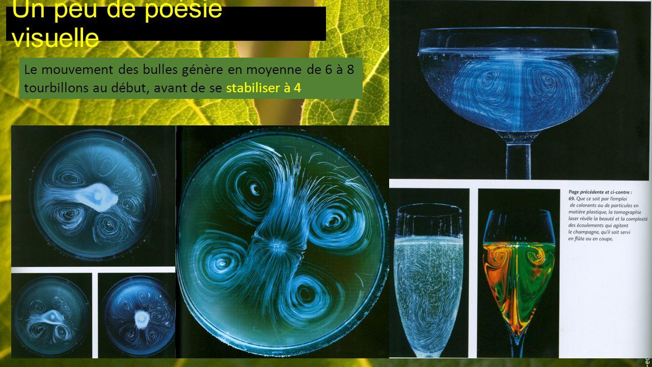 Un peu de poésie visuelle Le mouvement des bulles génère en moyenne de 6 à 8 tourbillons au début, avant de se stabiliser à 4