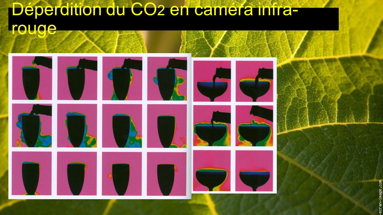 Déperdition du CO 2 en caméra infra- rouge
