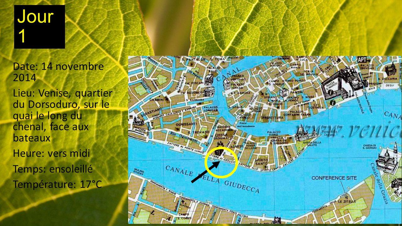 Jour 1 Date: 14 novembre 2014 Lieu: Venise, quartier du Dorsoduro, sur le quai le long du chenal, face aux bateaux Heure: vers midi Temps: ensoleillé Température: 17°C