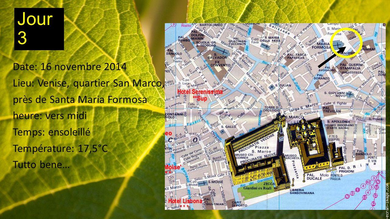 Jour 3 Date: 16 novembre 2014 Lieu: Venise, quartier San Marco, près de Santa Maria Formosa heure: vers midi Temps: ensoleillé Température: 17,5°C Tutto bene…