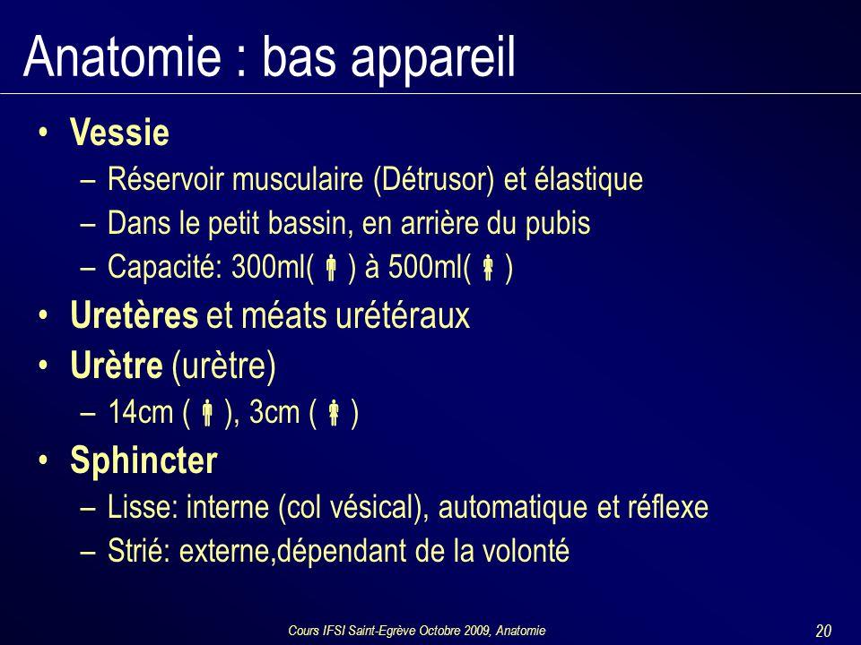 Cours IFSI Saint-Egrève Octobre 2009, Anatomie 20 Anatomie : bas appareil Vessie –Réservoir musculaire (Détrusor) et élastique –Dans le petit bassin, en arrière du pubis –Capacité: 300ml(  ) à 500ml(  ) Uretères et méats urétéraux Urètre (urètre) –14cm (  ), 3cm (  ) Sphincter –Lisse: interne (col vésical), automatique et réflexe –Strié: externe,dépendant de la volonté