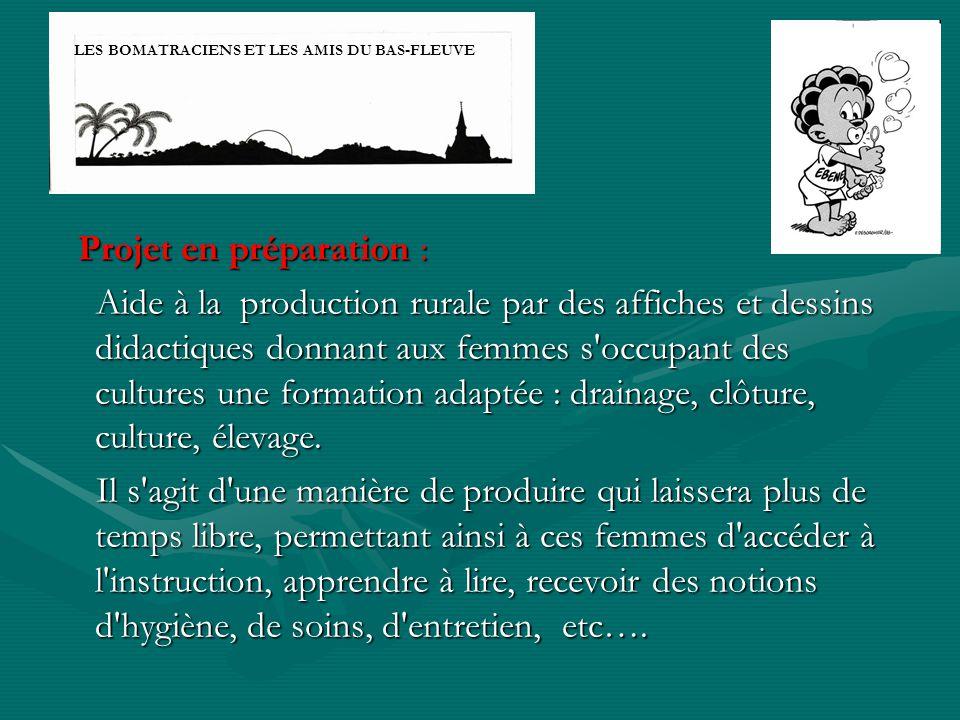 Projet en préparation : Projet en préparation : Aide à la production rurale par des affiches et dessins didactiques donnant aux femmes s'occupant des