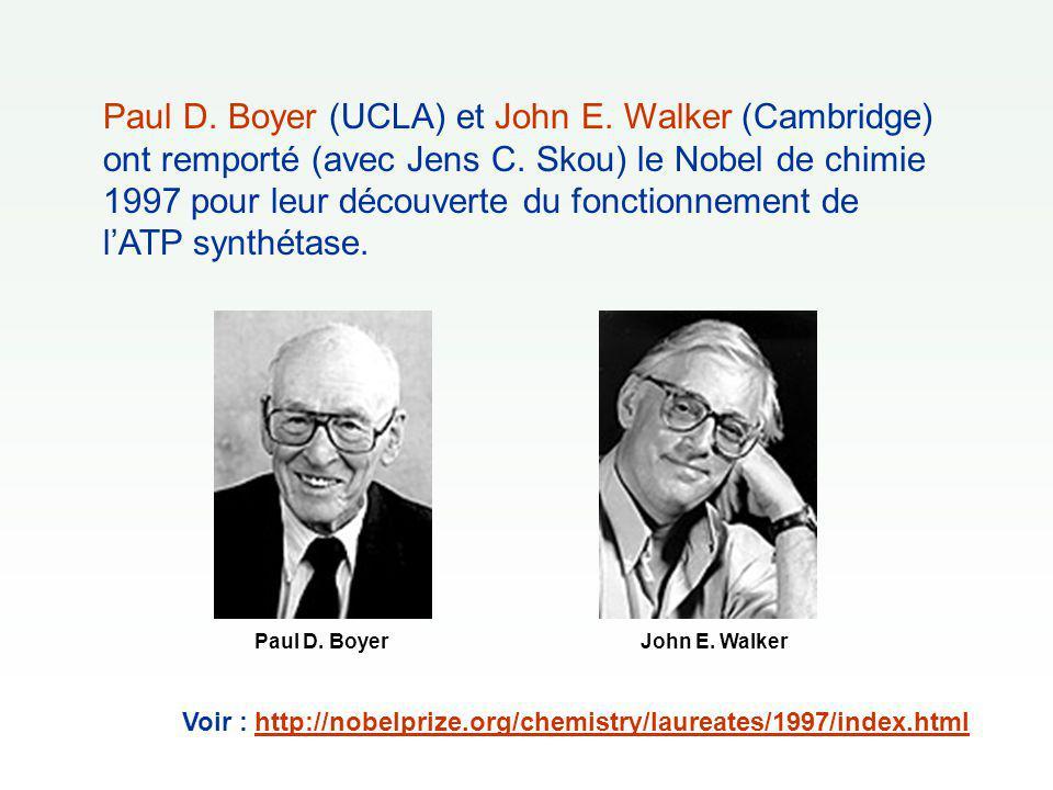 Paul D. Boyer (UCLA) et John E. Walker (Cambridge) ont remporté (avec Jens C. Skou) le Nobel de chimie 1997 pour leur découverte du fonctionnement de
