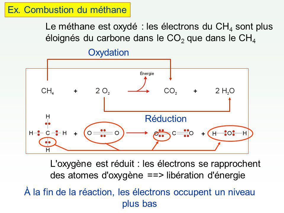 1 glucose + 6 O 2 6 CO 2 + 6 H 2 O + Énergie À la fin de la réaction, les électrons occupent un niveau plus bas.