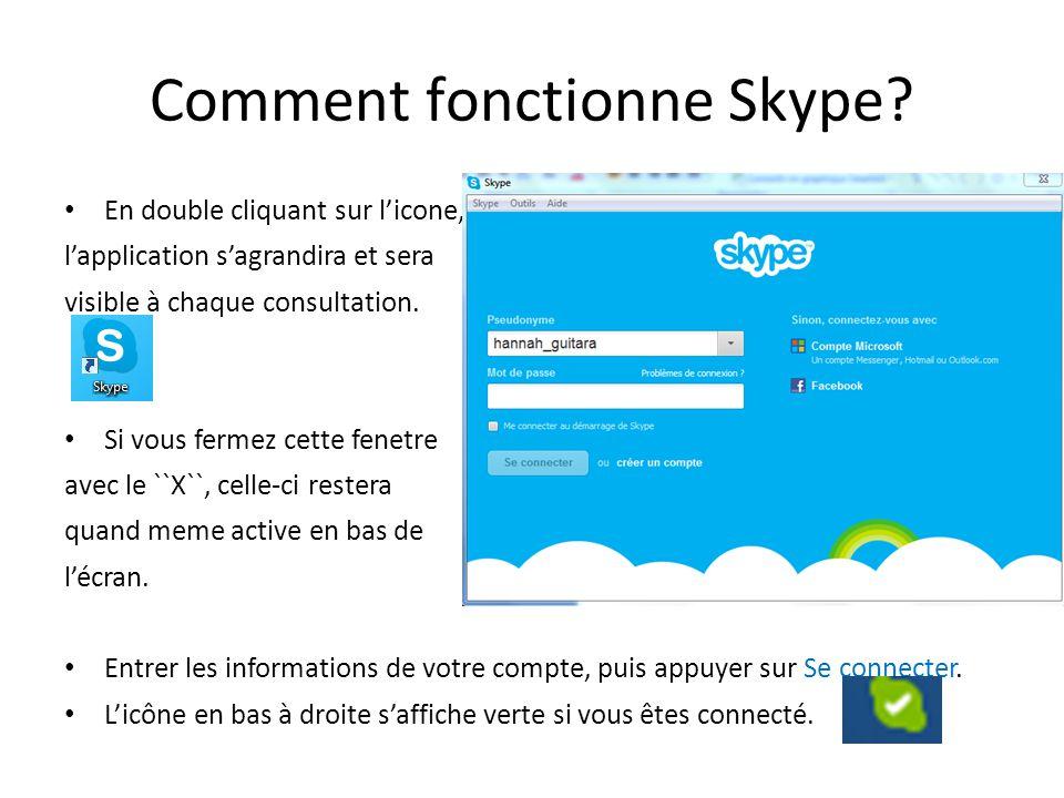 Comment fonctionne Skype? En double cliquant sur l'icone, l'application s'agrandira et sera visible à chaque consultation. Si vous fermez cette fenetr