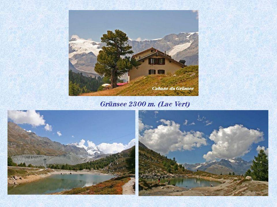 Pt Cervin 3883 m.Breithorn 4164 m Cabane de la Gandegg