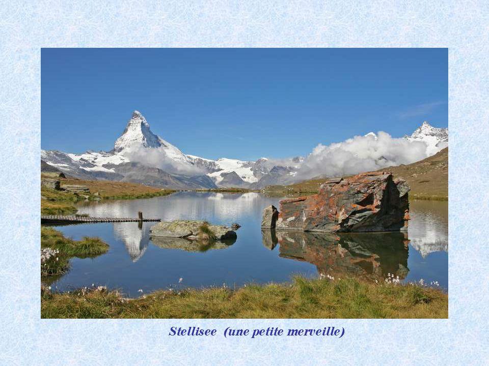 Cabane Fluhlalp 2616 m. Stellisee 2583 m.